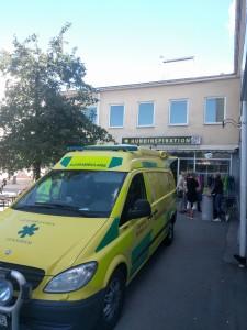 Djurambulansen Stockholm på event i Täby